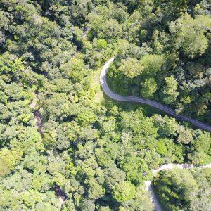 Kawasan Hutan TNKS Wilayah Bukit Tapan